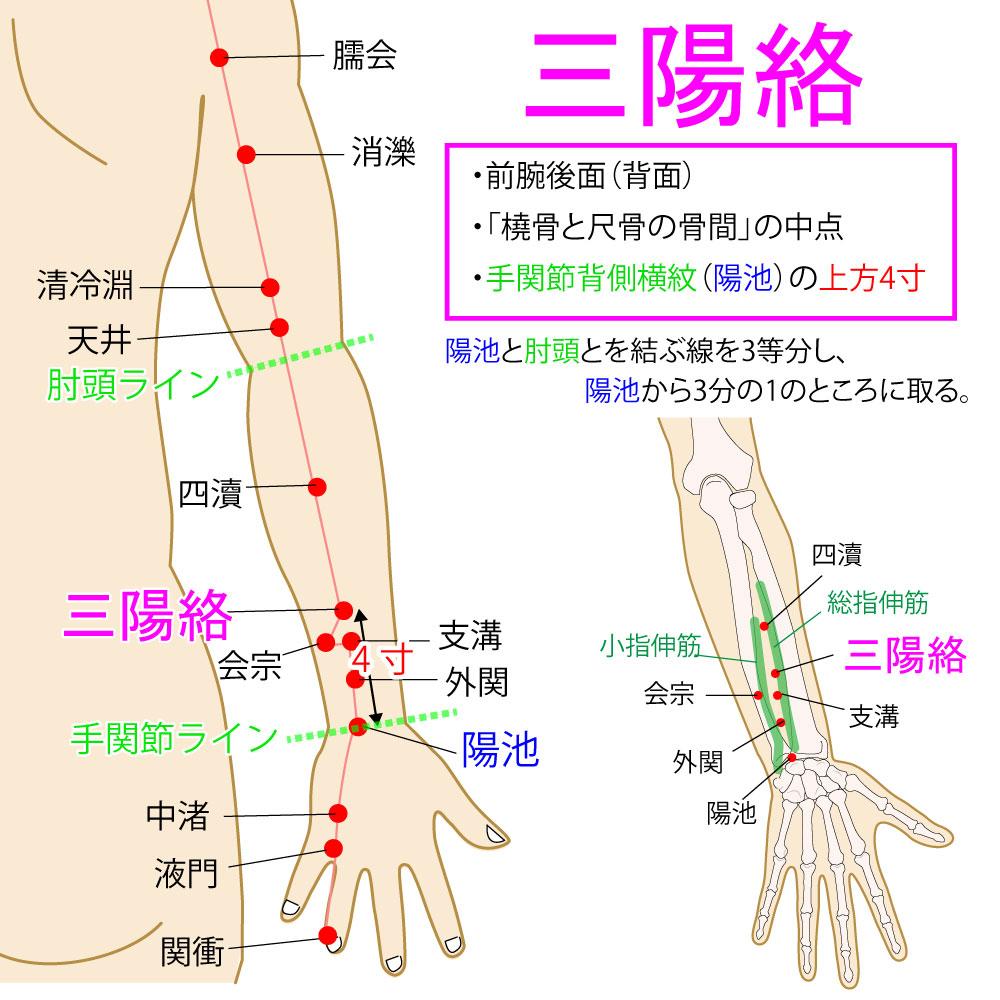 三陽絡(さんようらく:TE8)
