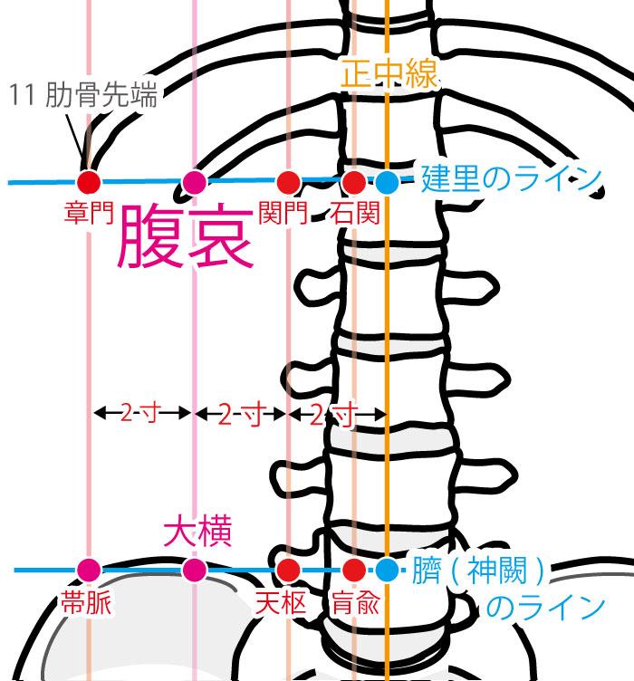 腹哀(ふくあい:SP16)