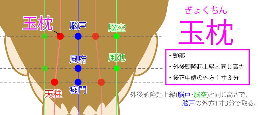 玉枕(ぎょくちん:BL9)