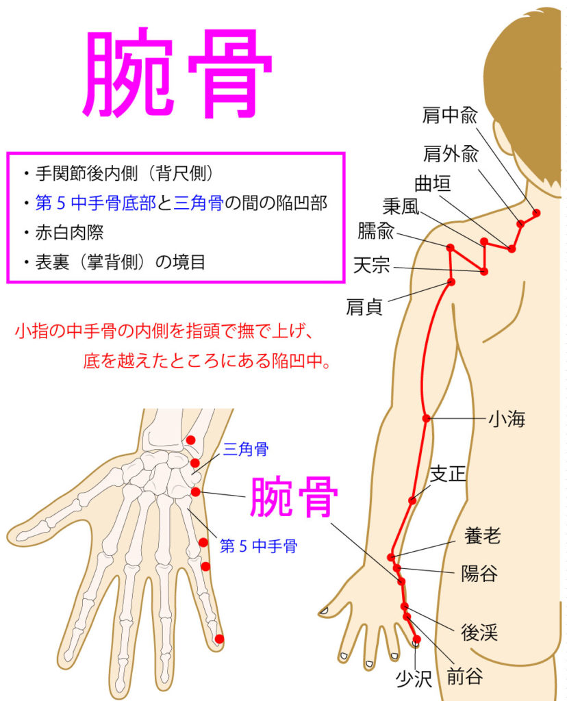 腕骨(わんこつ:SI4)