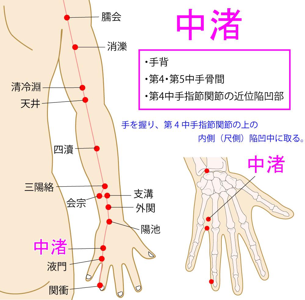中渚(ちゅうしょ:TE3)