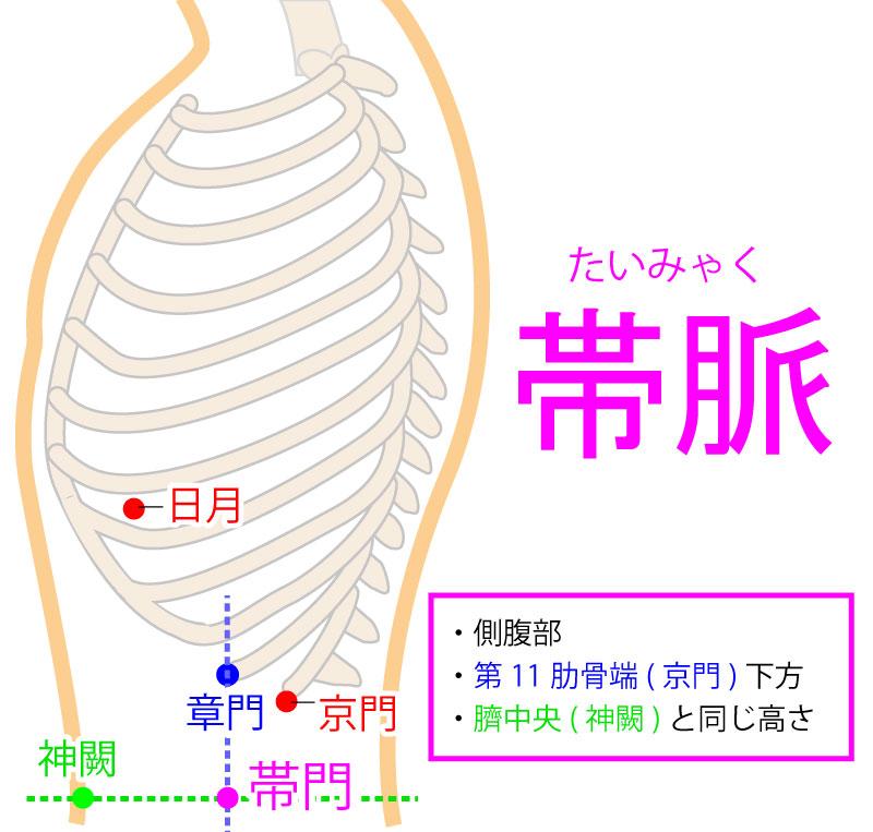 帯脈(たいみゃく:GB26)