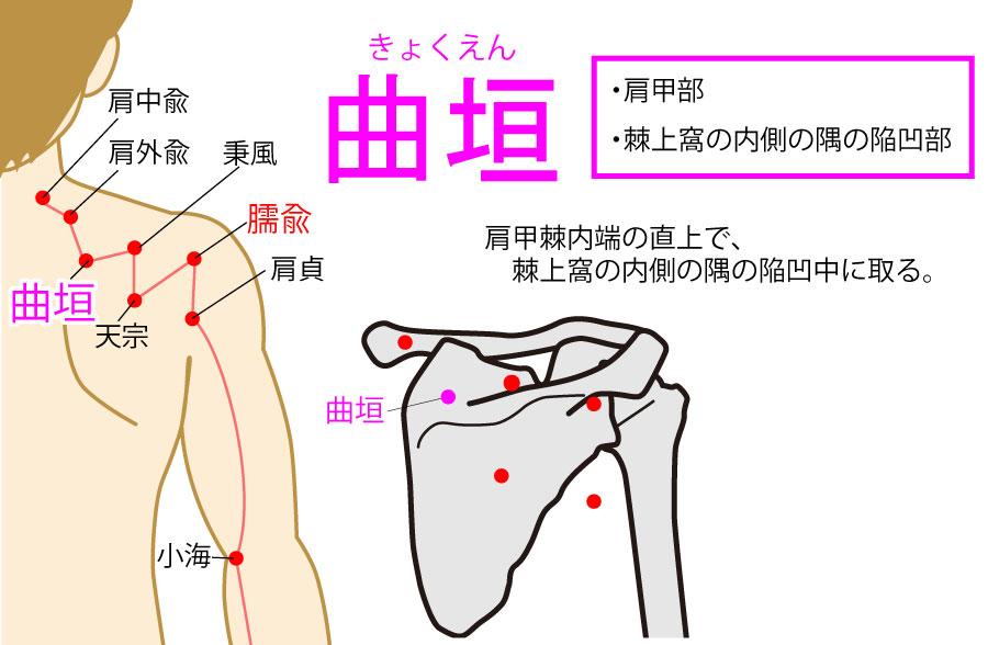 曲垣(きょくえん:SI13)