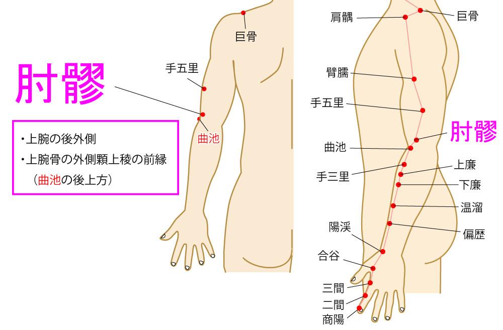肘髎(ちゅうりょう:LI12)