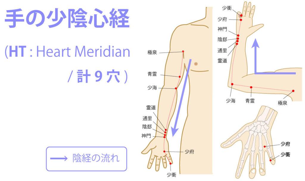 手の少陰心経(しょういんしんけい:Heart Meridian)