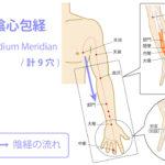 手の厥陰心包経(けついんしんぽうけい:Pericardium Meridian)