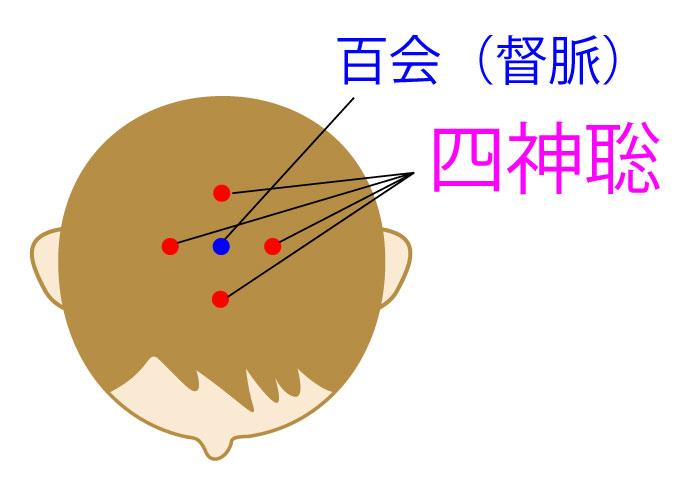 四神聡(ししんそう)