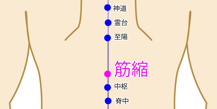 筋縮(きんしゅく:GV8)