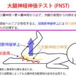 大腿神経伸張テスト(FNST)【腰部疾患の検査】